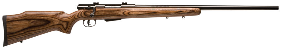 SAVAGE ARMS 25 LIGHTWEIGHT VARMINTER