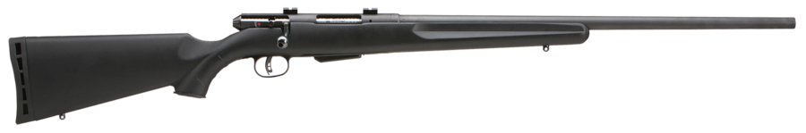 SAVAGE ARMS 25