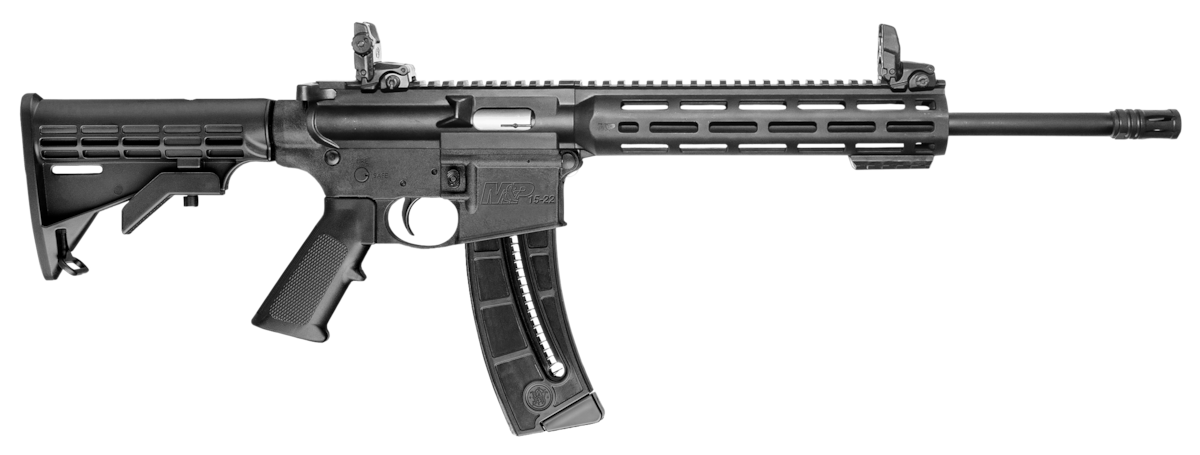 SMITH & WESSON M&P15-22 SPORT