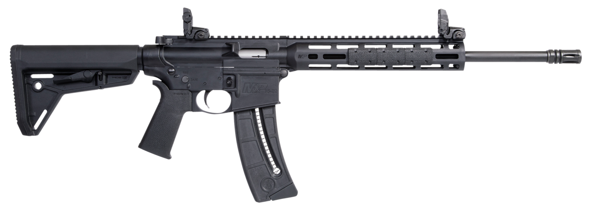 SMITH & WESSON M&P15-22 SPORT MOE SL