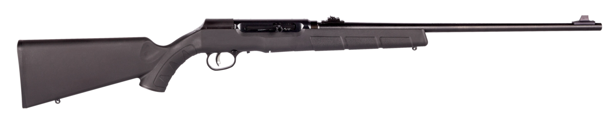 SAVAGE ARMS A22