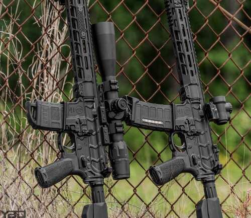 dual rifle sights