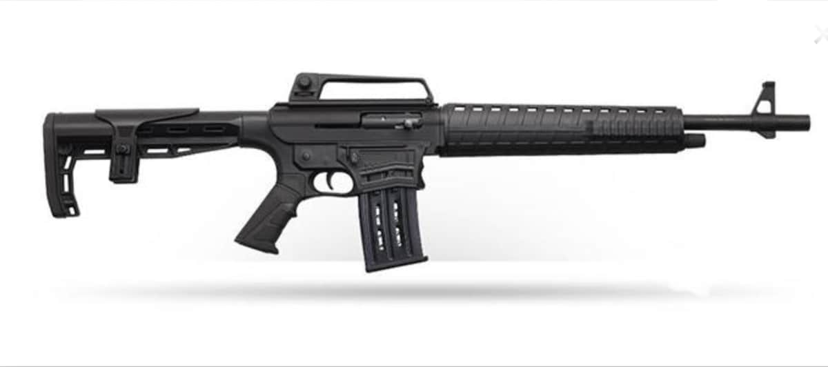 CHARLES DALY AR-12S