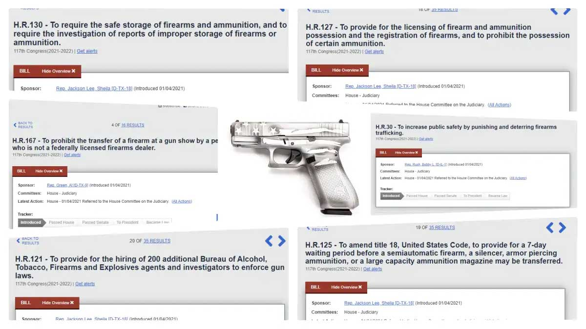 recent anti gun bills