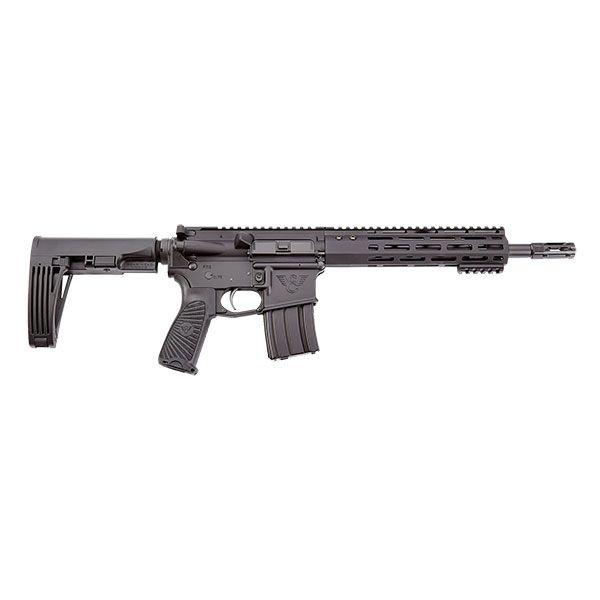 WILSON COMBAT Protector ar-15 Pistol