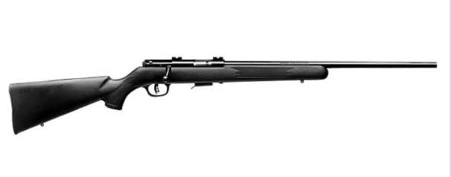 SAVAGE ARMS 93R17-F w/AccuTrigger