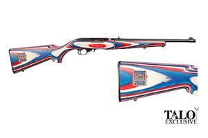 Ruger 10/22 Team USA Take Down