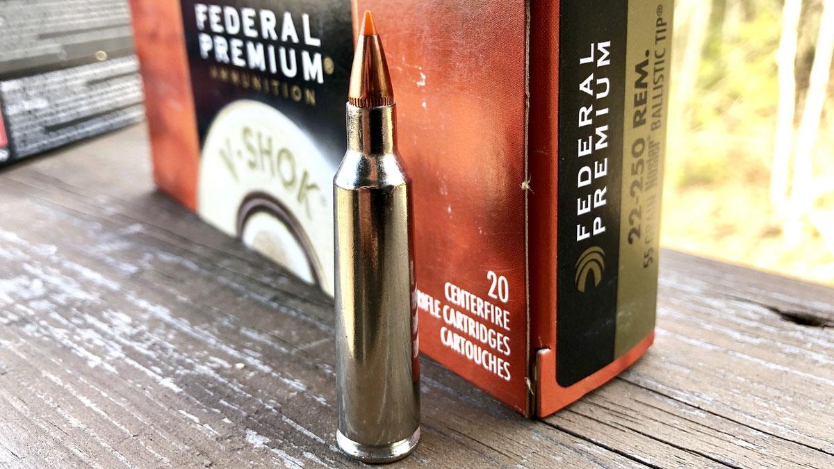 Federal .22-250 Remington Ammo