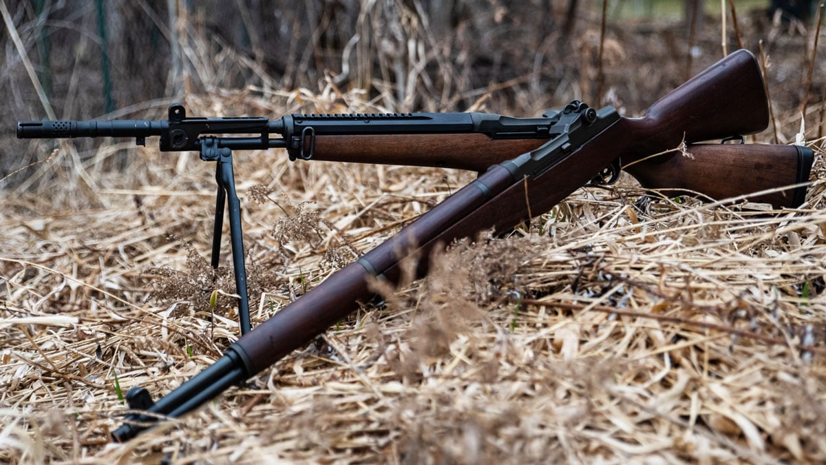 Beretta BM 59 & M1 Garand