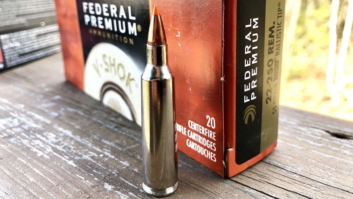 .22-250 Ammo
