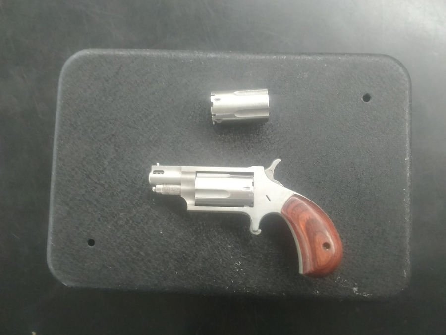 NORTH AMERICAN ARMS .22 Mag Mini Antivenom