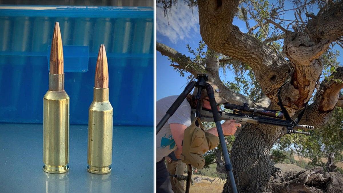 6mm GT vs. 6mm ARC