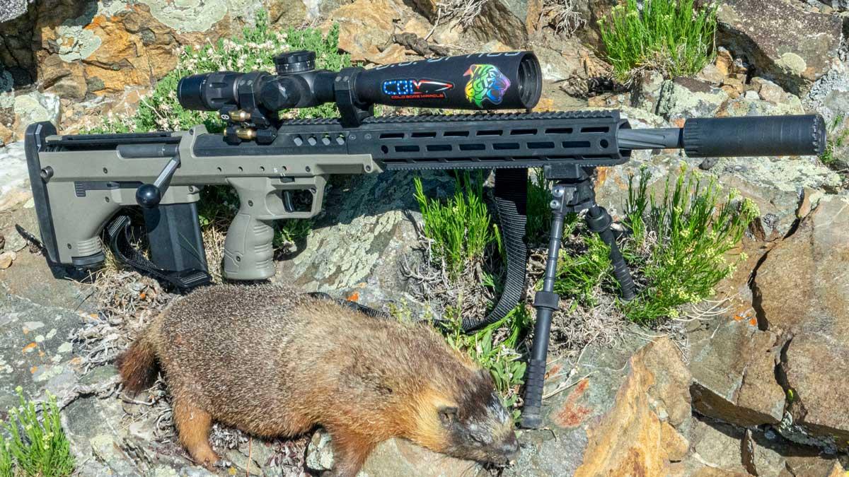 B&T Atlas Bipod On Desert Tech Rifle