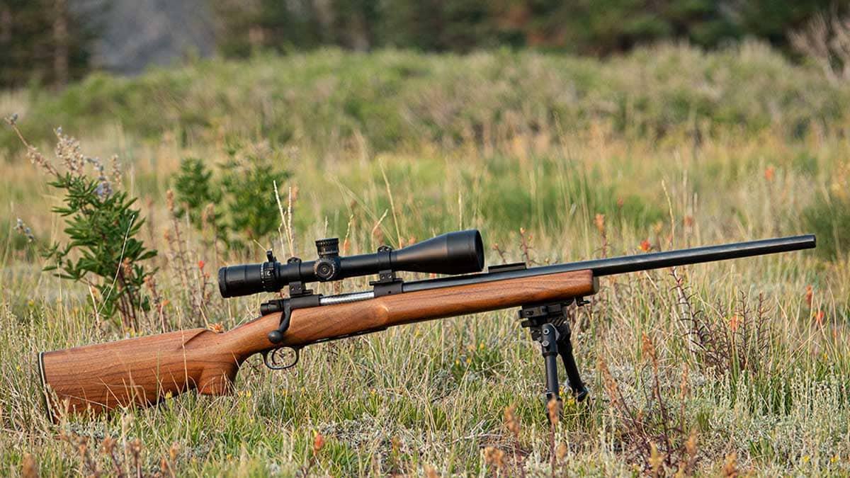 Winchester Model 70 in a field