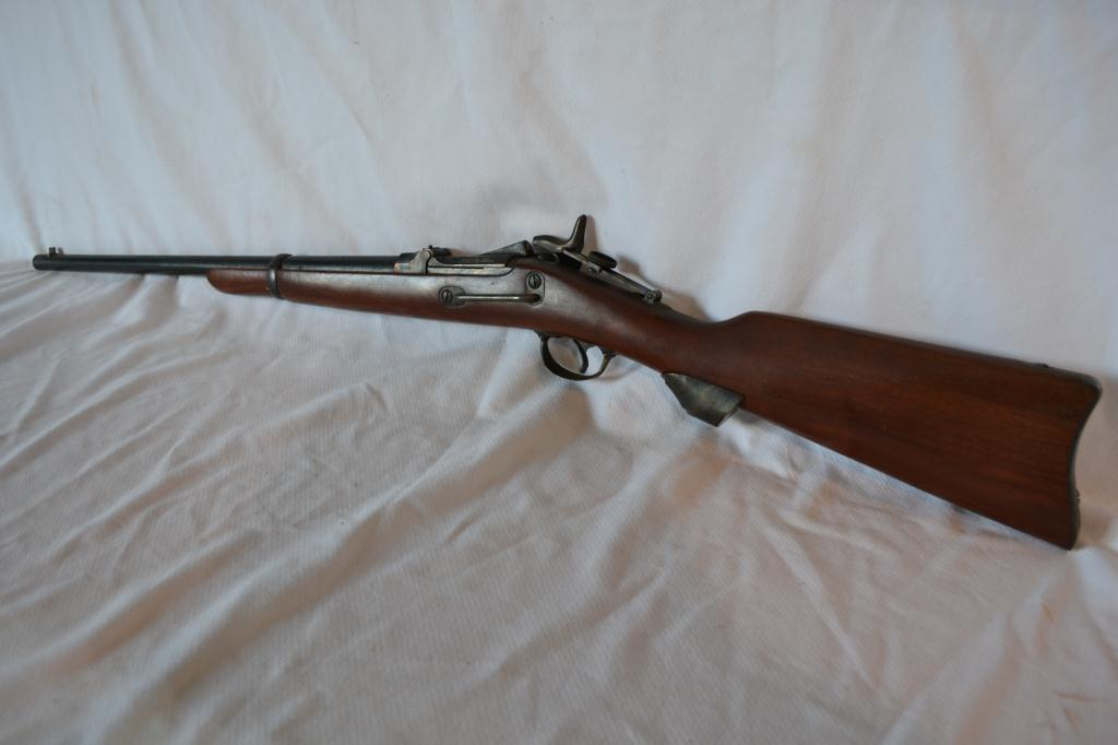 Model 1873