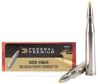.300 H&H Magnum.