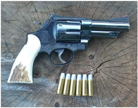 ruger blackhawk with bullets on stump