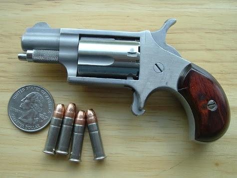 New NAA Mini Revolver in .22 LR