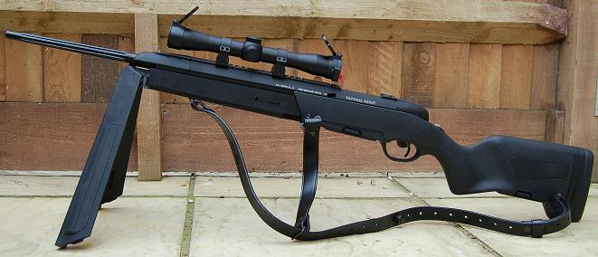 Steyr Scout .308