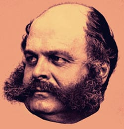 Ambrose Burnside was a politician who also created the Burnside Carbine.