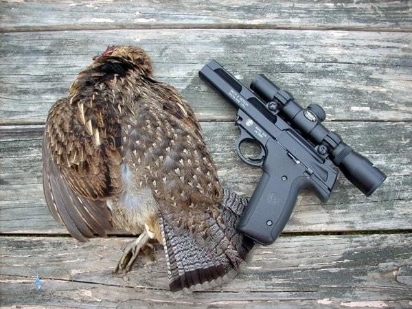 handgun for hunting