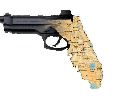 state of florida shaped gun