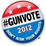 gunvote 2012 button