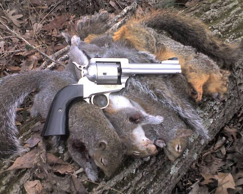 hunting squirrel smith and wesson