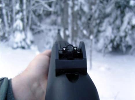 ghost ring rear sight