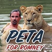 peta for romney sign