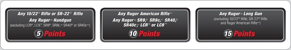 Ruger's point system