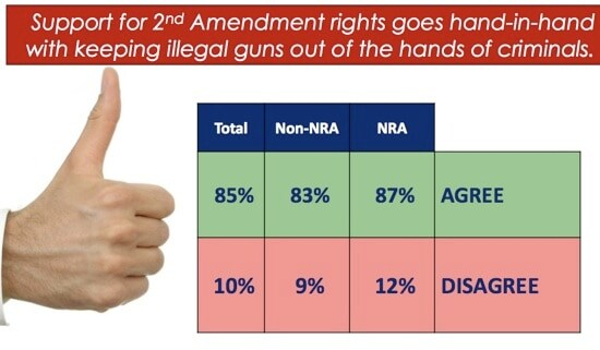 support for 2nd amendment rightts