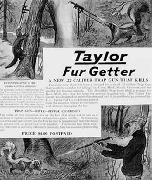 taylor fur getting magazine ad