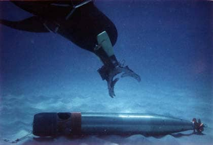 military-dolphins-7
