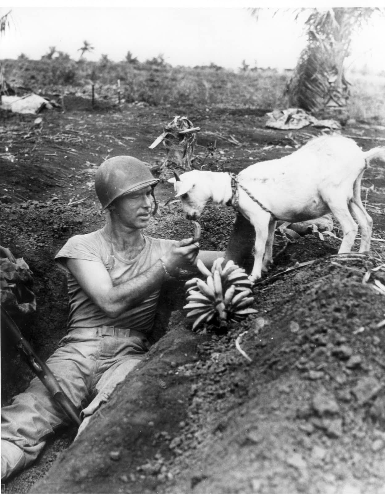 Soldier shares bananas with goat