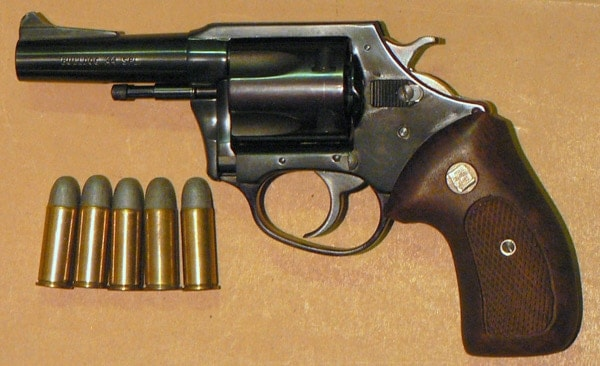 Charter Arms Bulldog in .44 Special.