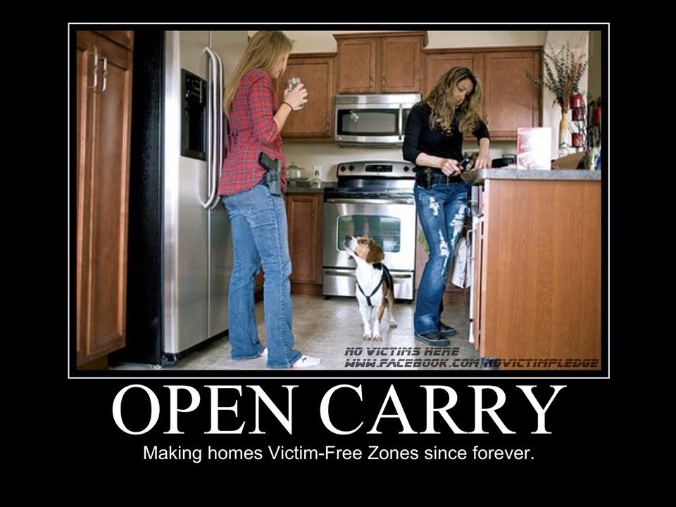Carrying in your home: Bad idea or safe practice? (Photo credit: Facebook/No Victims Here)