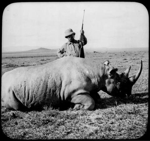 Teddy Roosevelt on safari
