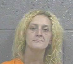 Mugshot of Lisa Beth Blankenship, who officers say was under the influence of a controlled substance when she broke into the home. (Photo credit: WVVA)