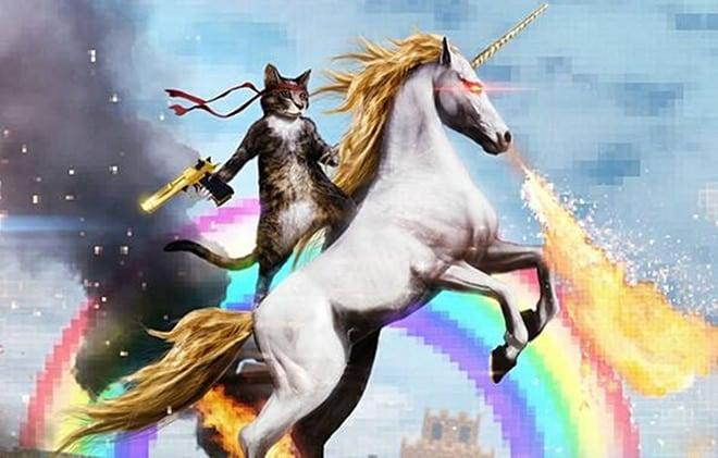 .50 Caliber Rambo Kitty Assault Unicorn