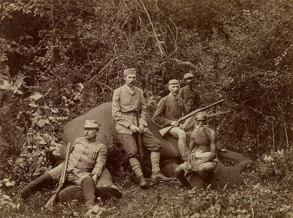 Franz Ferdinand on elepahnt hunt