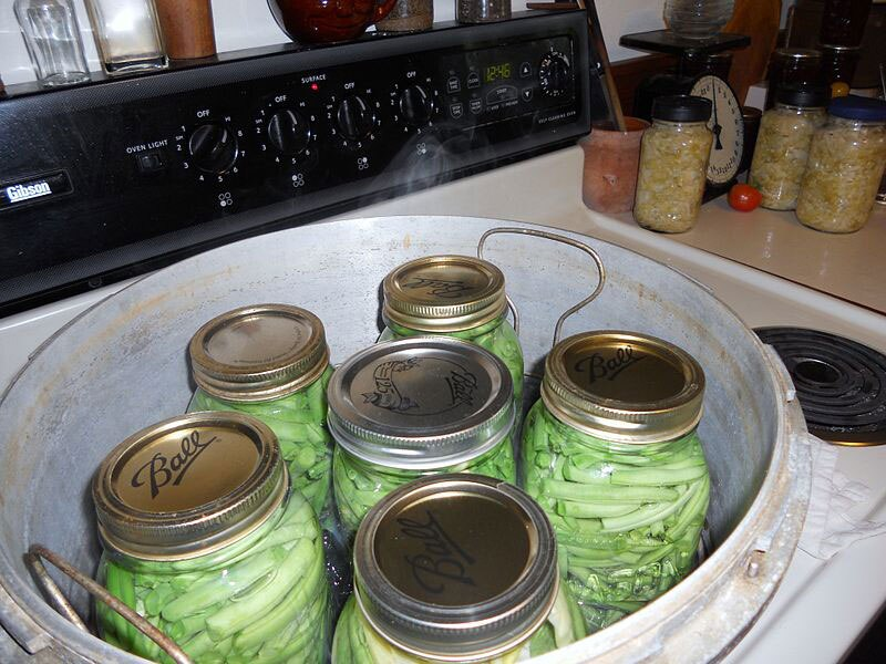 """When she Googled """"pressure cooker"""" was she canning green beans or doing something a bit more questionable… like cooking quinoa? (Photo credit: Gandydancer/ Wikimedia)"""