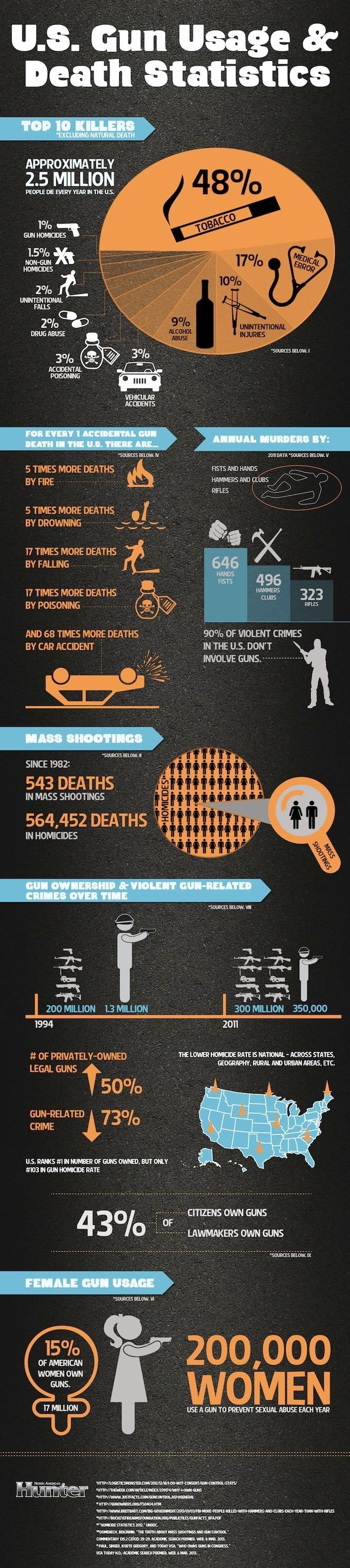 GunFactsInfographic