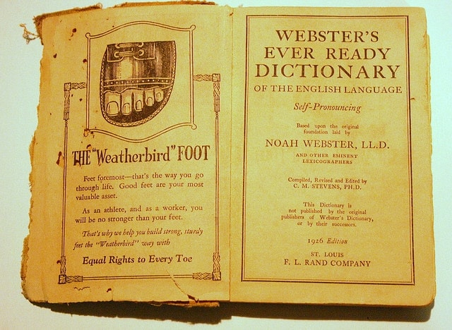 websters-dictionary-1