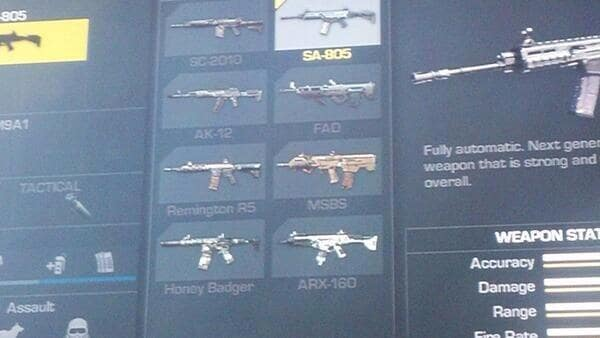 Call_of_duty_ghosts_assault_rifle