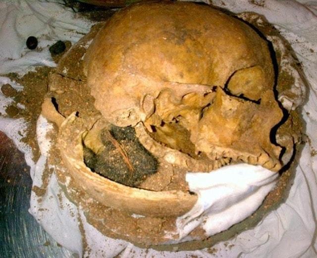FLL Skull - Pod 2 - KD
