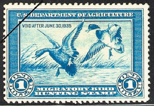 Paper duck stamps could be a thing of the past if the SHARE Act makes it into law.