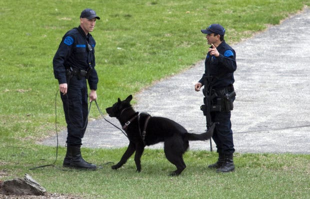 K-9 units were called in to help search for the suspects, but were unsuccessful. (Photo credit: M Live)