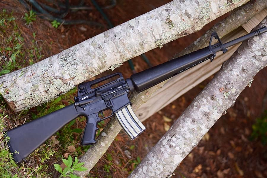 ar-15 standing next to small trees