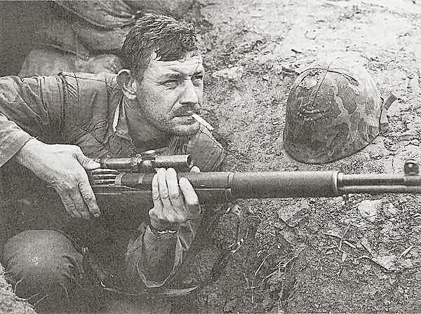 M1 Carbine with M82 scope